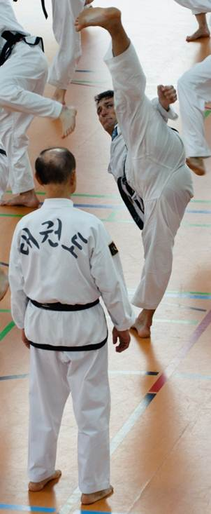 Großmeister Gerd Göres vor Großmester Kwon Jae Hwa